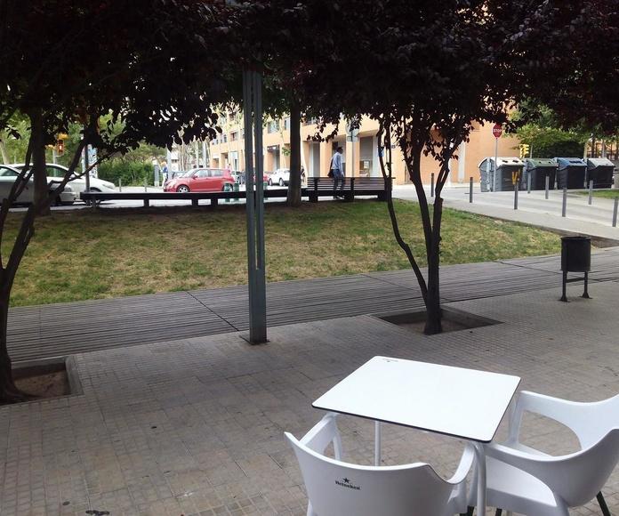 Terraza, árboles y calle del restaurante A la Cazuela
