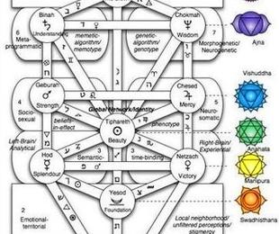 Bionergi: circuitos de conciencia