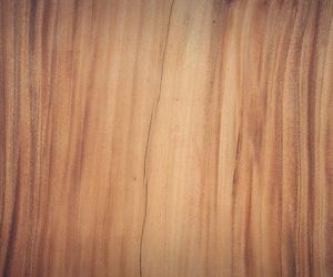 Roble, pino o cerezo, entre las mejores maderas que puedes elegir para tu armario
