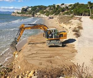 Desbroce, limpieza de parcelas y playas.
