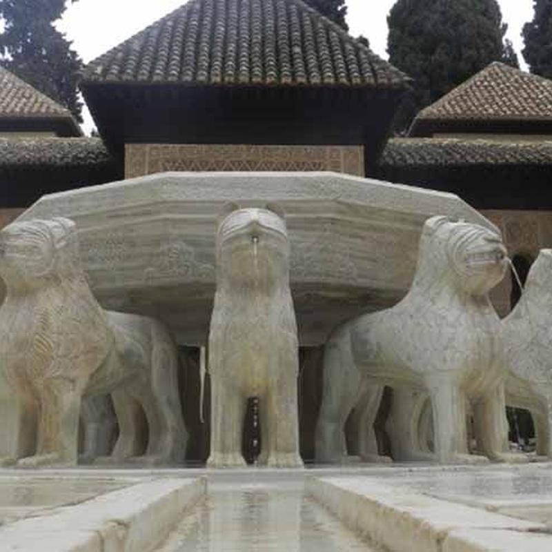Restauración de monumentos y rehabilitación de edificios : Servicios de Bados Navarro