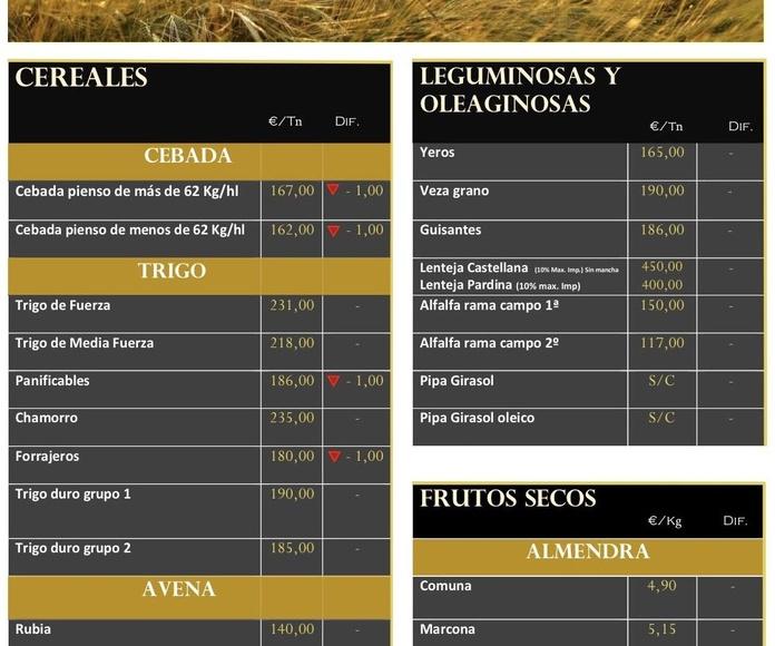 Lonja de Albacete. Semana 36