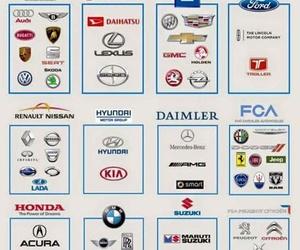 Trabajamos con todas las marcas de vehículos