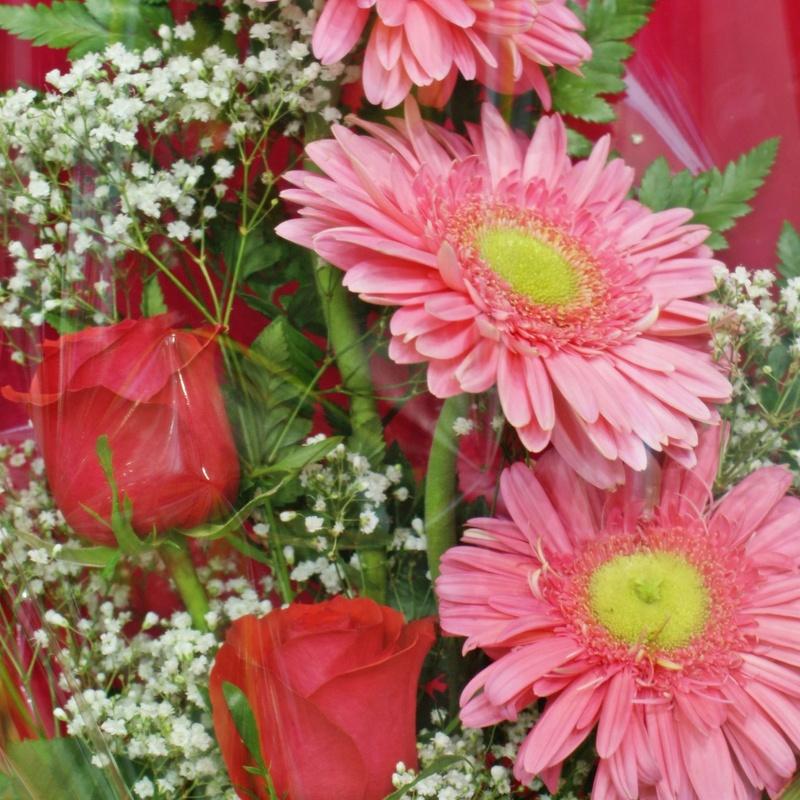 Ramo dos rosas: Servicios de Floristería Contreras