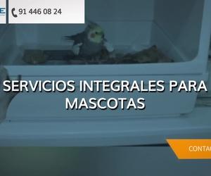 Veterinarios de urgencias exóticos en Madrid centro | Centro Veterinario Madrid Exóticos