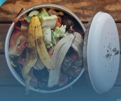 Sobre cómo perdemos y desperdiciamos alimentos sin remordimiento