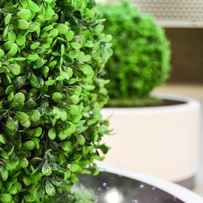 Ventajas de las plantas artificiales en casa