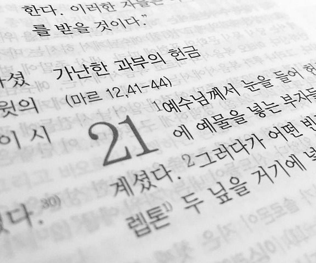 ¿Qué idioma hablas? Necesitas un profesional de la traducción