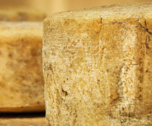 Distribuidor de quesos