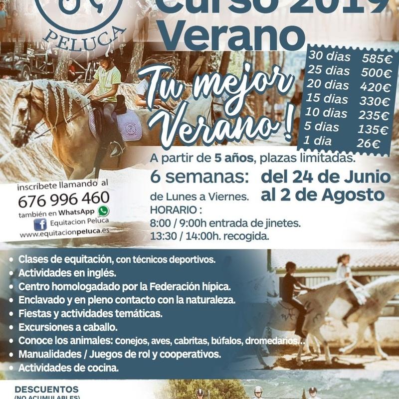 Cursos de verano 2019: Servicios de Equitación Peluca