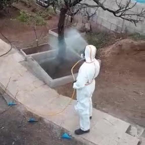 Control de plagas en Tenerife | Castesol Control de Plagas