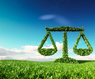 Derecho Laboral: Especialidades de Abogado Francisco Jurado Ruiz