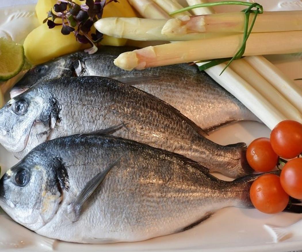 Las diferencias entre el pescado blanco y el azul