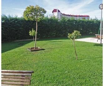 Piscinas: Servicios de Jardinería FG
