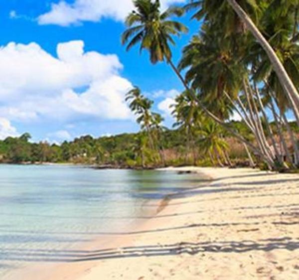 Caribe: Servicios de Aran Bidaiak