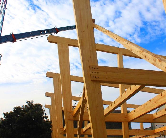 Grandes estructuras: Productos y servicios de Cortelima