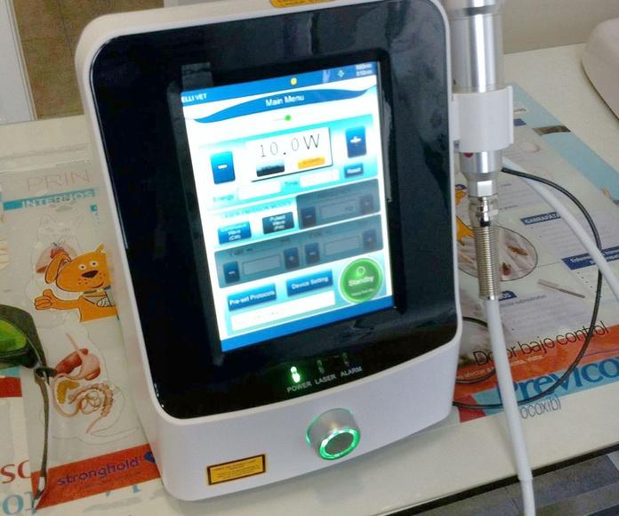 Láser terapéutico: Servicios de Centro Veterinario Trivet