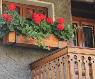 Vallas y cercado: Servicios de Jardinería Belardi, S.L.