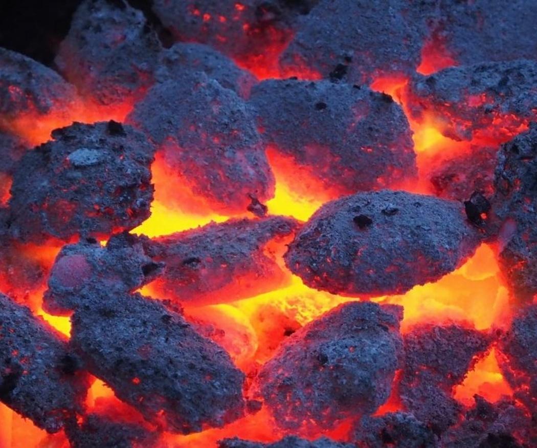 ¿Leña o carbón para barbacoa?