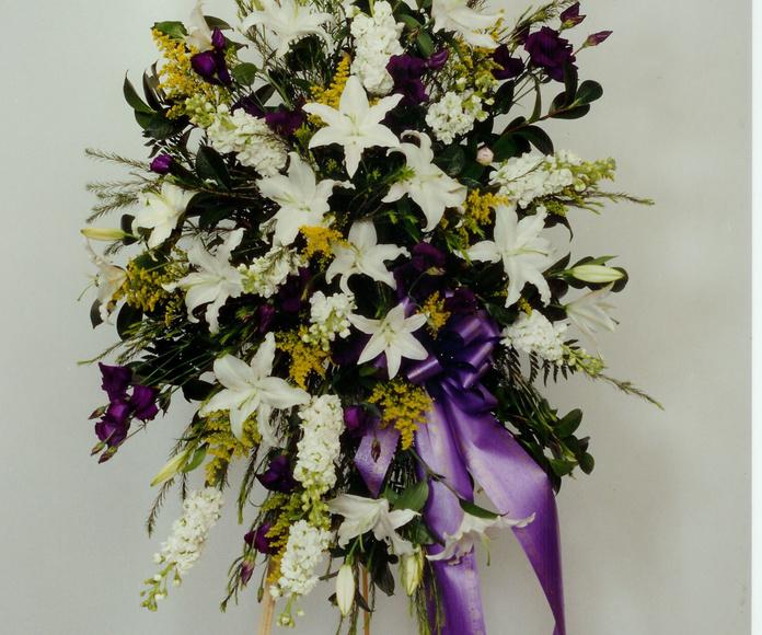 corona funeral centro americano