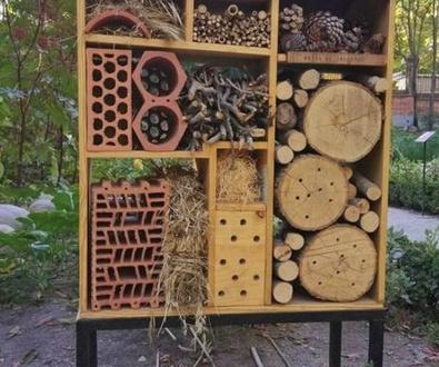 «Hoteles» para insectos