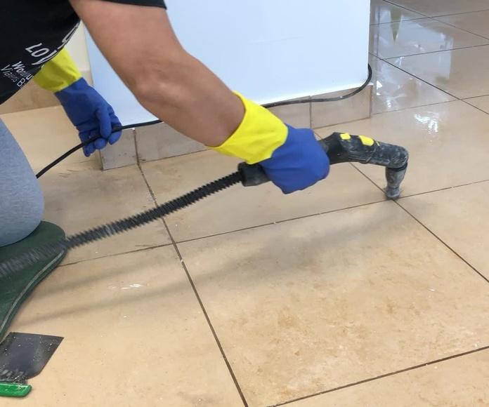 Limpieza a particulares: Servicios que realizamos de Limpiezas Pirineos. Tel 617 32 76 52