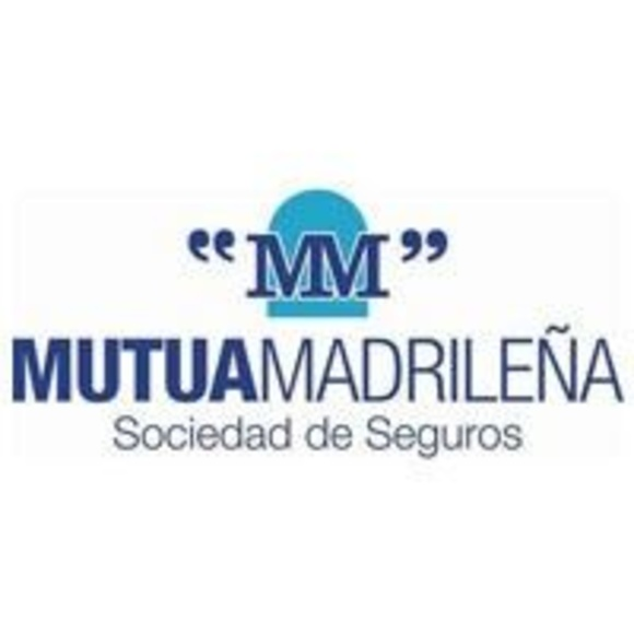 Aseguradoras: Servicios de taller de Talleres Sanburauto