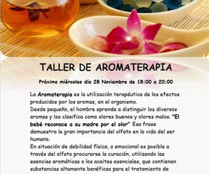 taller aromaterapia