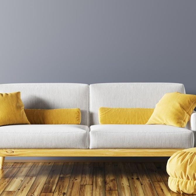 ¿Por qué es importante para tu salud mantener tus sofás limpios?