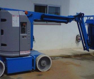 Camión grúa con cesta elevadora: SERVICIOS de Agrutrans
