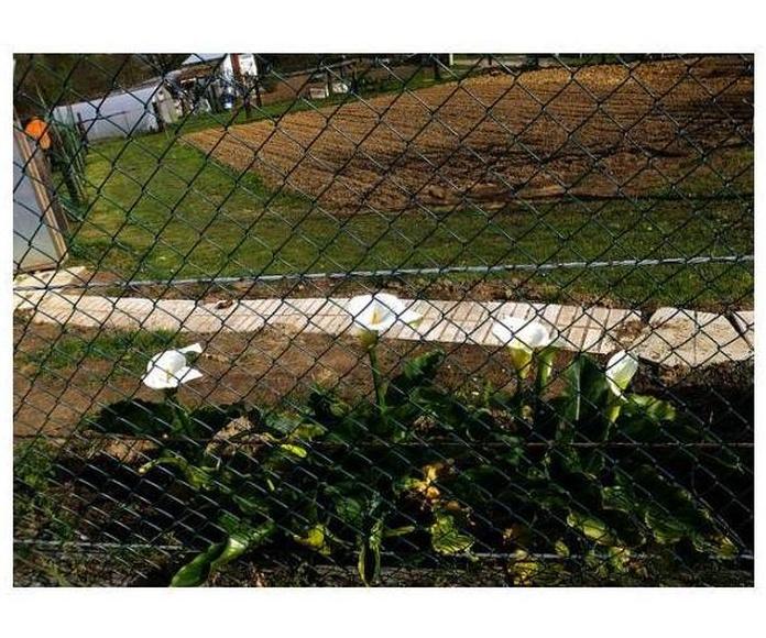 Cierre de fincas: Mantenimiento de Jardines de Jardinería Suso