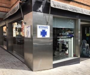 Centro veterinario con formación y prácticas en Madrid