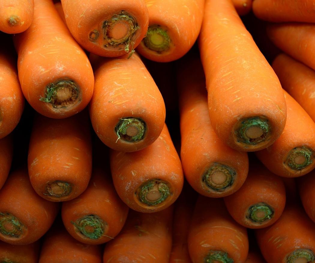 Cocinar fácil y nutritivo con zanahorias