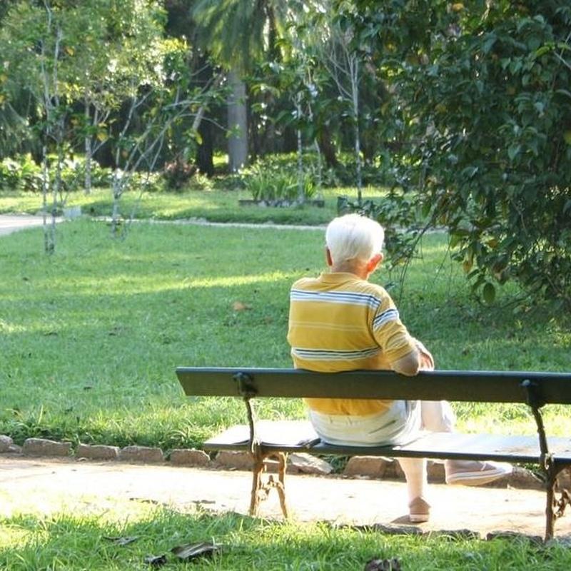 Especialidad: Residencia de Centro de Día para Mayores El Parque