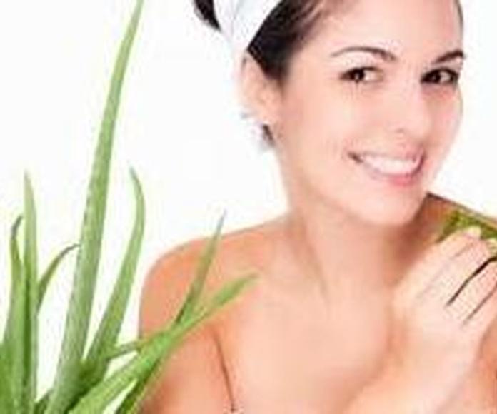 USO DIARIO: Productos  de Aloe Fábrica Ecológico