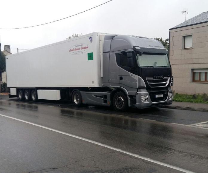 Transporte nacional: Servicios de Trans. Armesto Arango, S. L.