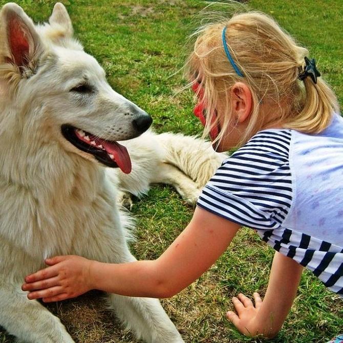 Niños y mascotas, los mejores amigos de un jardín cuidado