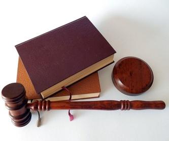 Derecho penal : Áreas de Navarro, Ana María
