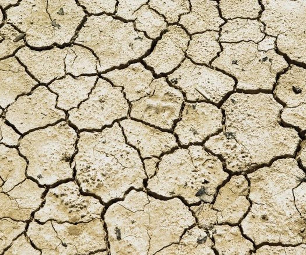 La sequía es un problema de todos