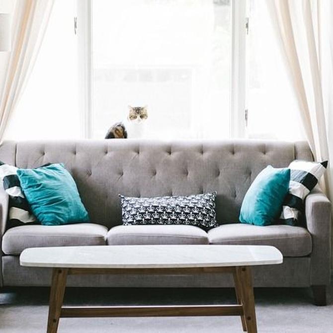 Consejos para el cuidado y limpieza de tu sofá