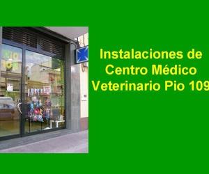 Entrada Centro Medico Veterinario Pio 109