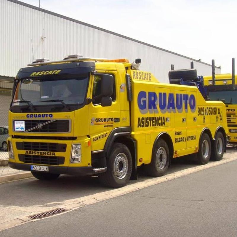 Gruas para vehiculos industriales (camiones, remolques y autobuses).