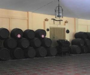 Alquiler de finca para celebraciones en La Barca de Vejer