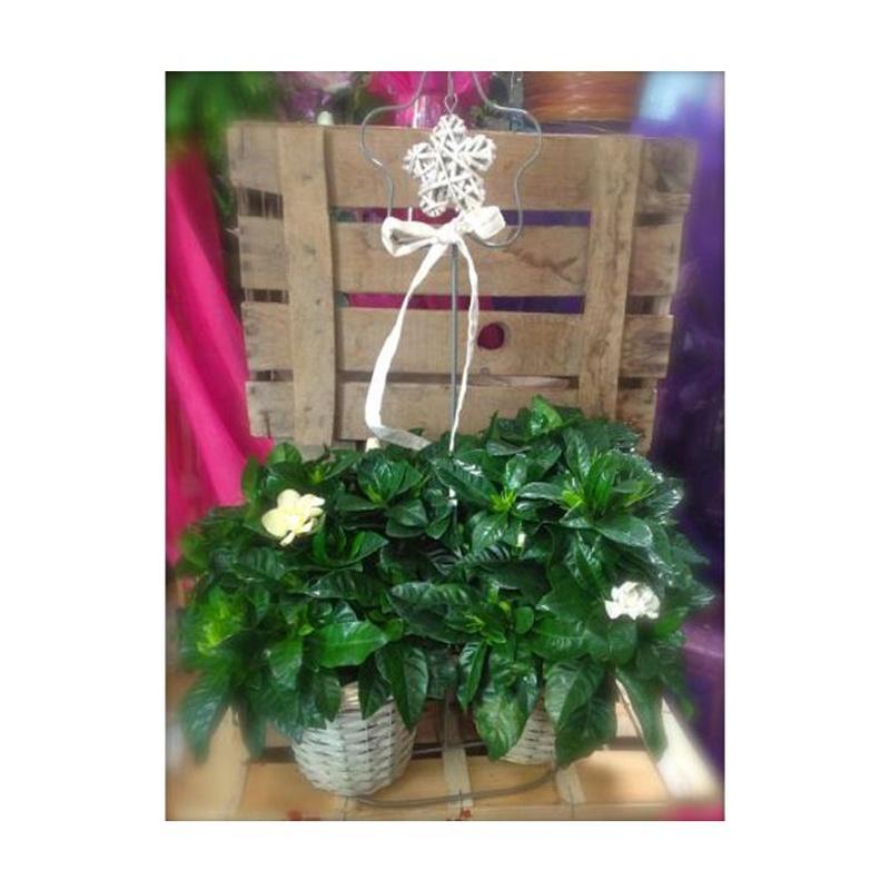 Gardenias en soporte decoración
