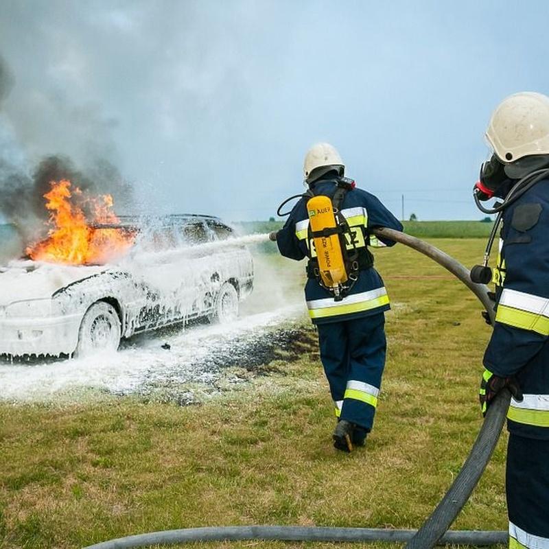 Cursos formación incendios 1: Servicios de Extintores Proinse