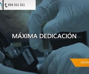 Clínica veterinaria de urgencias en Sevilla | Hospital Veterinario La Salle Abierto 24 horas
