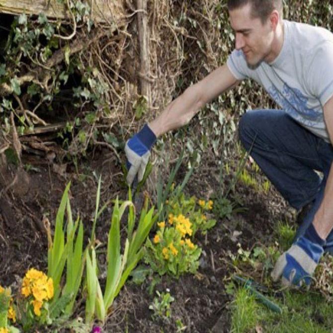 Los sentidos en el diseño del jardín