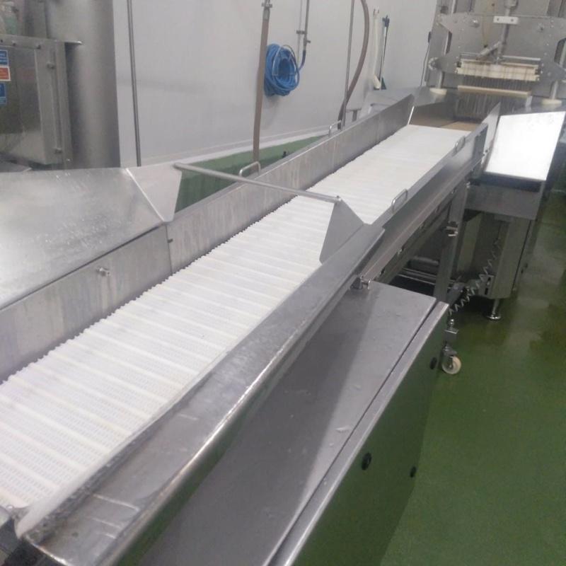 Inyector para salar carne y pescado:  de MAQUIMUR