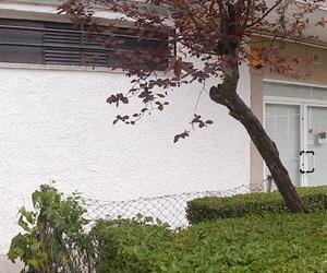 Fachada Clínica Veterinaria el Parque en Collado Villalba