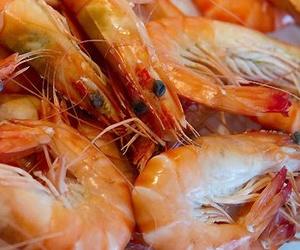 Mayorista de pescado fresco en Las Palmas